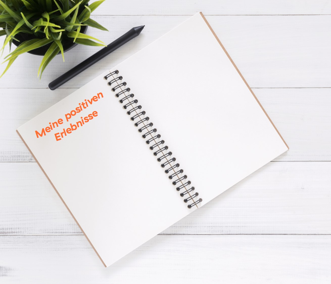 Ringbuch mit Stift und grüner Pflanze
